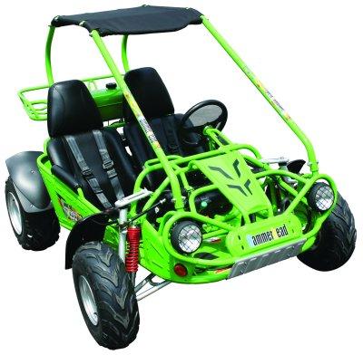 Go Karts Atlanta Ga >> Go Kart Go Cart Buggy Atlanta Georgia Ga Hammerhead Offroad Gt 150 150cc
